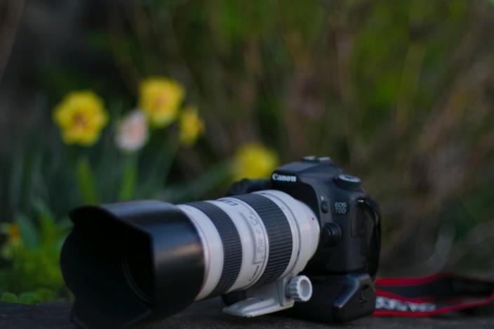 靠入门级相机市占率第一,佳能后劲如何?